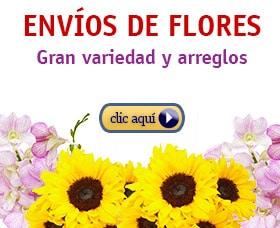 enviar flores por internet amazon ahorrar dinero