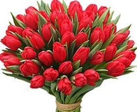 tulipanes para mama