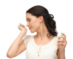 mejor perfume para mujer mejor perfume para hombre comprar perfume por internet