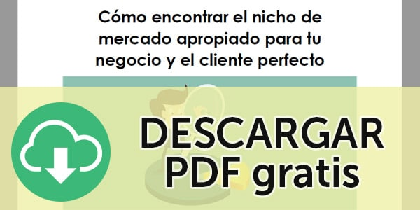 nichos de mercado pdf