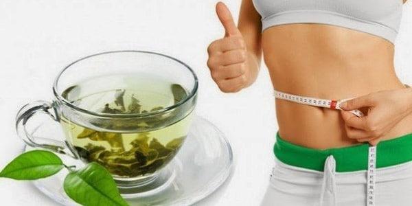 té verde perder peso beneficios
