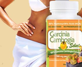 Ingredients for garcinia cambogia image 2
