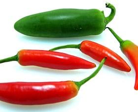 comidas quema grasa pimientos chile