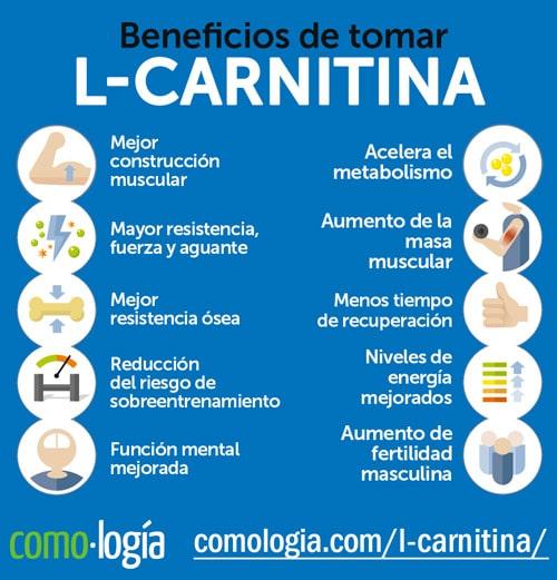 l carnitina beneficios dosis efectos secundarios