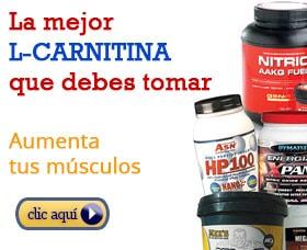 tomar l carnitina aumentar musculos quemar grasa