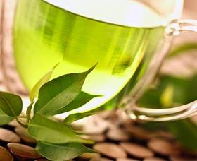te verde como perder peso sin dieta tomar agua