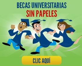 becas sin papeles universidad college