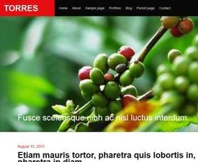 Plantillas de WordPress gratis: Torres