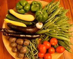 dieta tlc controlar mejorar la diabetes