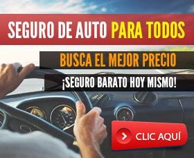 seguro de carro de otro estado