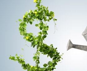 Cómo encontrar buenas compañías en la bolsa de valores