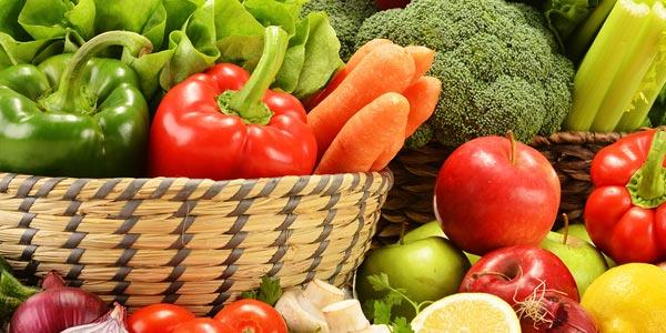 Resumen de la dieta comida cruda