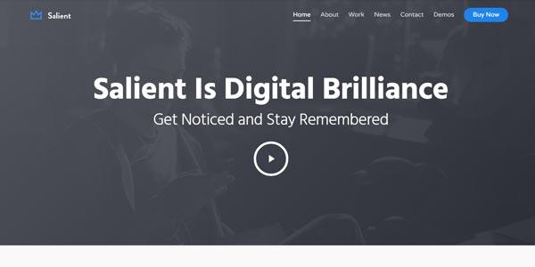 Plantillas WordPress responsive: Sallient