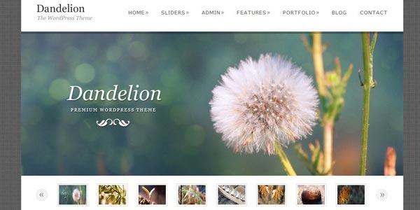 Temas WordPress para eCommerce: Dandelion