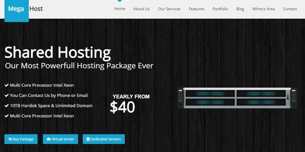 Temas WordPress para hosting: Mega Host
