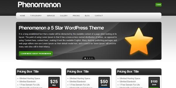 Temas WordPress para hosting: Phenomenon