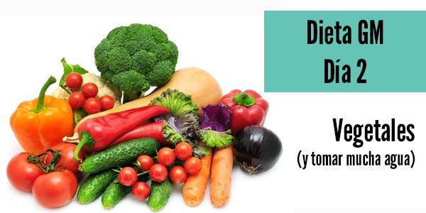 Dieta gm dia 2 perder peso adelgazar