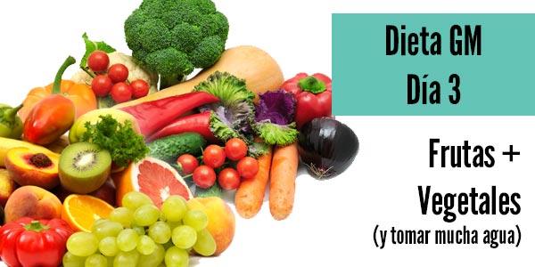 Dieta gm dia 3 frutas vegetales tomar agua
