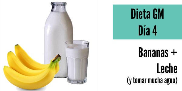 Dieta gm dia 4 bananas leche tomar agua