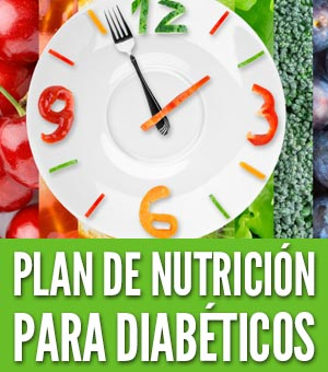 plan de nutrición para la diabetes del aguacate