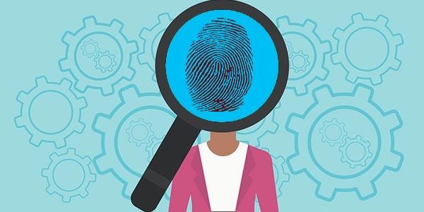 Investigación de antecedentes en empleos (job background check)