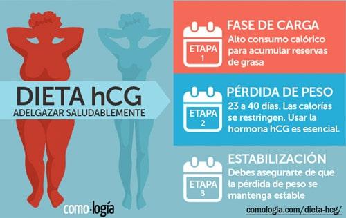 Fases de la Dieta hCG para adelgazar