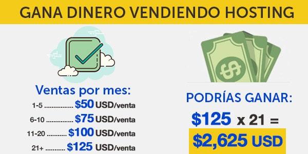 ganar dinero hosting alojamiento web