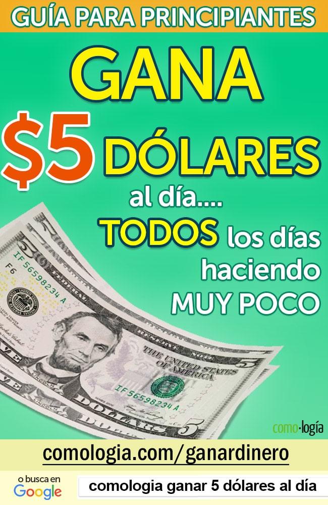 5 dolares al dia
